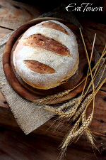 Pain de Campagne small